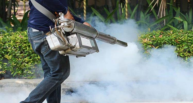 How To Choose The Right Pest Control Service